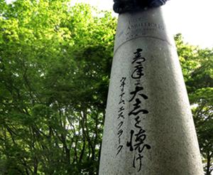 北海道恵庭市島松沢の畑