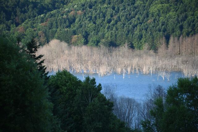 夕張・三笠のダム湖を見学してきました。